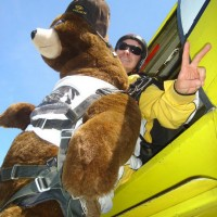 Skydiving Bear